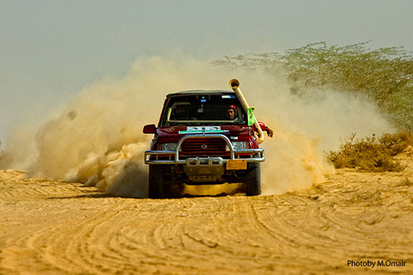 A Desert Rally Picture by APP