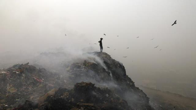 Delhi World's Most Polluted City, Mumbai Worse than Beijing: WHO